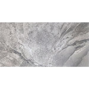 Avenzo 12-in x 24-in Avenzo Silver Porcelain Floor and Wall Tile