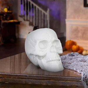 Holiday Living 6-in White Skull