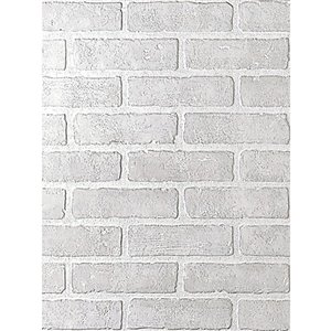 1/4-in x 4-ft x 8-ft White Wall Panel