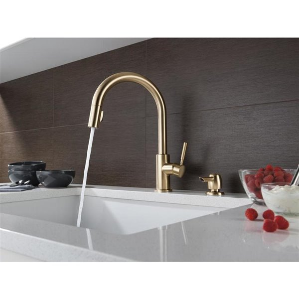 Delta Trask Single Handle Pull Down Kitchen Faucet With Soap Dispenser Champagne Bronze Lowe S Canada
