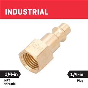 Kobalt Brass NPT Plug Female 1/4-In Industrial