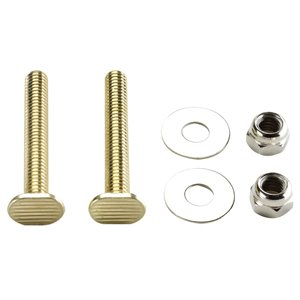 5/16-in Dia x 2-1/4-in L.  Polished Brass Floor Bolts
