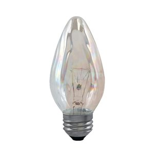 GE 40-Watt Medium Base F20 Incandescent Light Bulb (2-Pack)