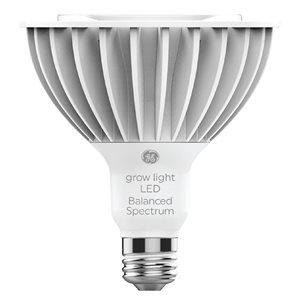 GE LED 32W PAR38 Horticulture Balanced (1-Pack)