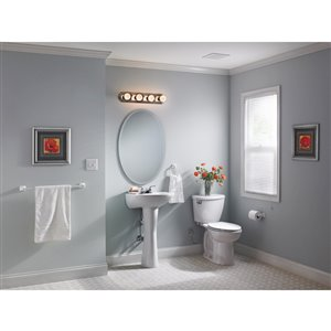Style Selections 24-in x 36-in Beveled Edge Wall Mirror