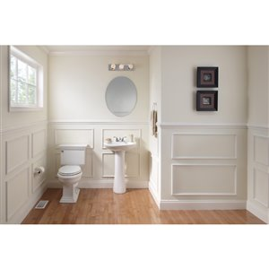 Style Selections 22-in x 28-in Beveled Edge Wall Mirror