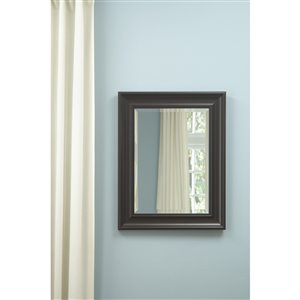 Style Selections 21-in x 27-in Espresso Rectangle Framed Wall Mirror