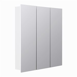 Style Selections 24.25-in x 25-in Rectangle Surface Medicine Cabinet with Mirror
