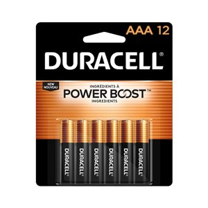 Duracell Coppertop AAA Alkaline Battery (12-Pack)