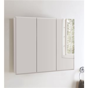 Style Selections 36.25-in x 29.75-in Rectangle Surface Medicine Cabinet with Mirror