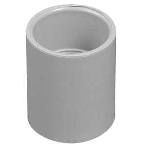 CARLON 1/2-in PVC Standard Coupling