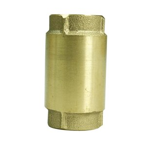 Parts2o 1-in Brass Check Valve