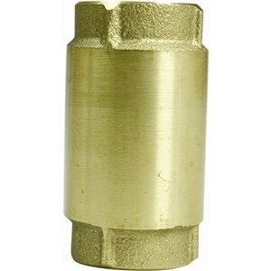 Parts2o 1 1/4-in Brass Check Valve