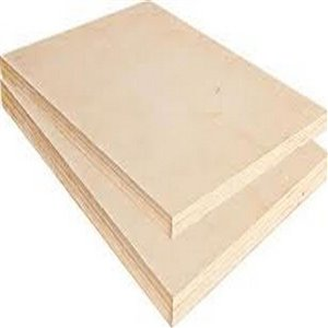 Taiga Building Products 1/2 x 4-ft x 8-ft Standard Spruce Plywood