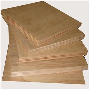 Taiga Building Products 5/8 x 4-ft x 8-ft CSP Spruce Standard Sheathing Plywood