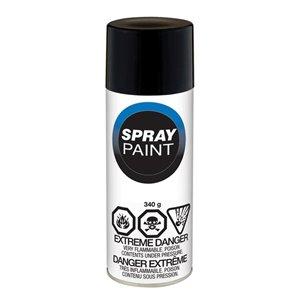 Valspar 10 oz Black Economy Flat Spray Paint