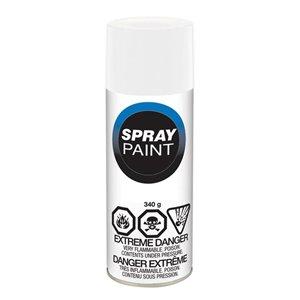 Valspar 10 oz White Economy Gloss Spray Paint
