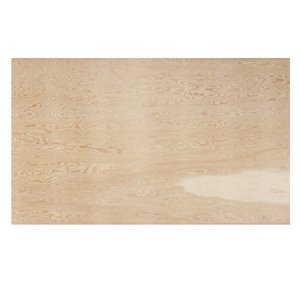 Richply 3/4 x 4-ft x 8-ft Fir Sanded Plywood