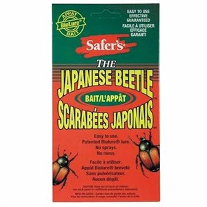 2-oz SaferS Japanese Beetle Bait Powder
