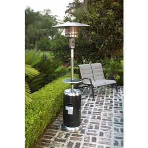 Style Selections Propane Gas Patio Heater 48 000 Btu