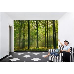 "Brewster Wallcovering Autumn Forest Wall Mural - 100"" x 144"""