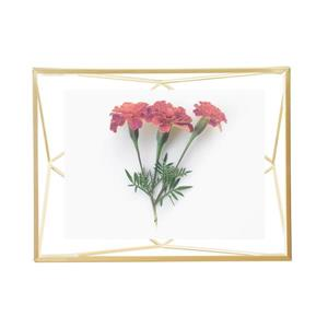 Umbra 4 x 6 Matte Brass Prisma Photo Display