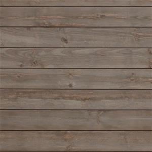 Timberwall 5/8-in x 5-in Shiplap Gray Appearance Board