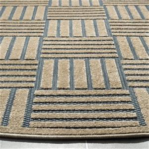 Safavieh Light Blue and Beige Cottage Indoor/Outdoor Rug,COT