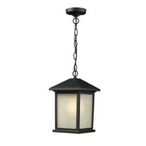Z-Lite Holbrook Outdoor Suspended Light - Black