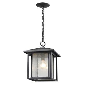 Z-Lite Aspen 1-Light Outdoor Suspended Light - Black