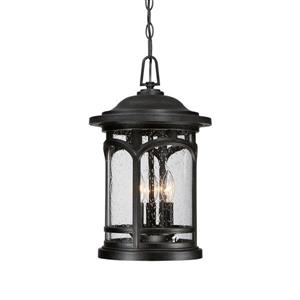 Quoizel Coastal Armour 11.5-in Mystic Black Transitional Lantern Pendant Lighting