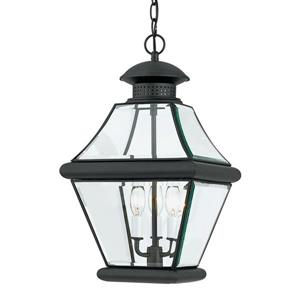 Quoizel Rutledge Mystic Black Transitional Clear Glass Lantern Pendant