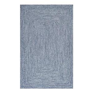 Braided Lefebvre Light Blue Area Rug