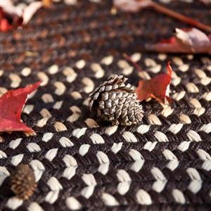 Colonial Mills Deerfield 3-ft x 5-ft Seal Brown Area Rug