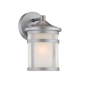 Acclaim Lighting Austin 9.25-in Brushed Silver Steel Outdoor Wall Lantern