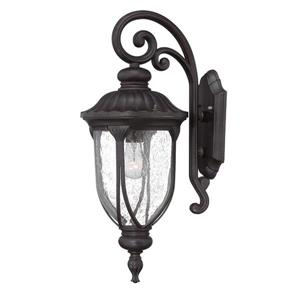 Acclaim Lighting Laurens 22.5-in Matte Black Clear Glass Downward Mount Outdoor Wall Lantern