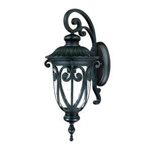Acclaim Lighting Naples 22.75-in Black Aluminum Outdoor Wall Lantern