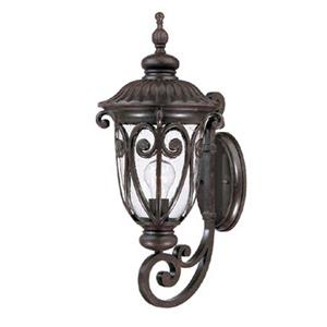Acclaim Lighting Naples 22.75-in x 9.34-in  Marbleized Mahogany Wall Mounted Lantern