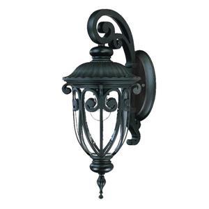 Acclaim Lighting Naples 18-in Matte Black Aluminum Outdoor Wall Lantern