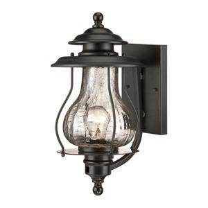 Acclaim Lighting Blue Ridge 16-in x 8-in Black Wall Mounted Lantern