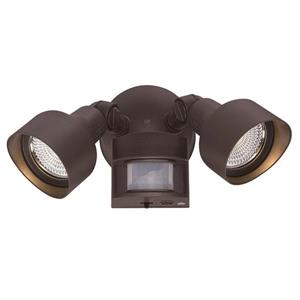 2-Light Motion Activated LED Flood Light