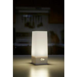 Acclaim Lighting Grey LED Wireless Tower Light