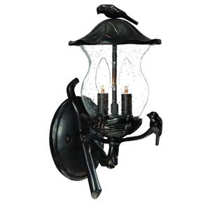 Avian 2-Light Upward Mounted Outdoor Wall Lantern