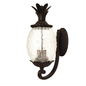 Acclaim Lighting Lanai 18-in Matte Black Clear Glass 2-Light Outdoor Wall Light