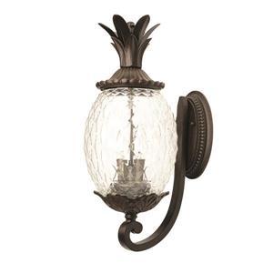 Acclaim Lighting Lanai 18-in Matte Black Clear Glass 2-Light Outdoor Wall Lantern