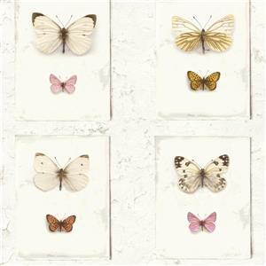 Walls Republic Butterfly Weathered Rustic Flutter Wallpaper
