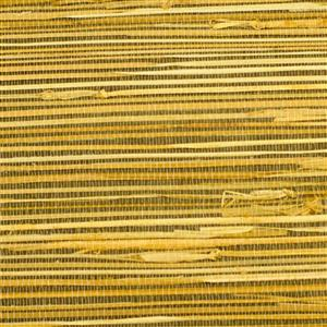 Walls Republic Buddle Yellow Grasscloth Paste The Wall  Wallpaper