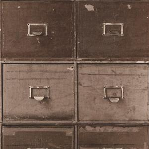 Walls Republic Brown/Brown Contemporary File Cabinet Wallpaper