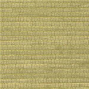 Walls Republic Wood Veneer Grasscloth 57 sq ft Yellow Green Unpasted Wallpaper