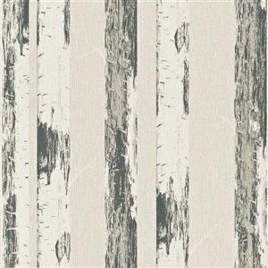 Walls Republic Multi-colored Contemporary Metallic Paper Birch Wallpaper